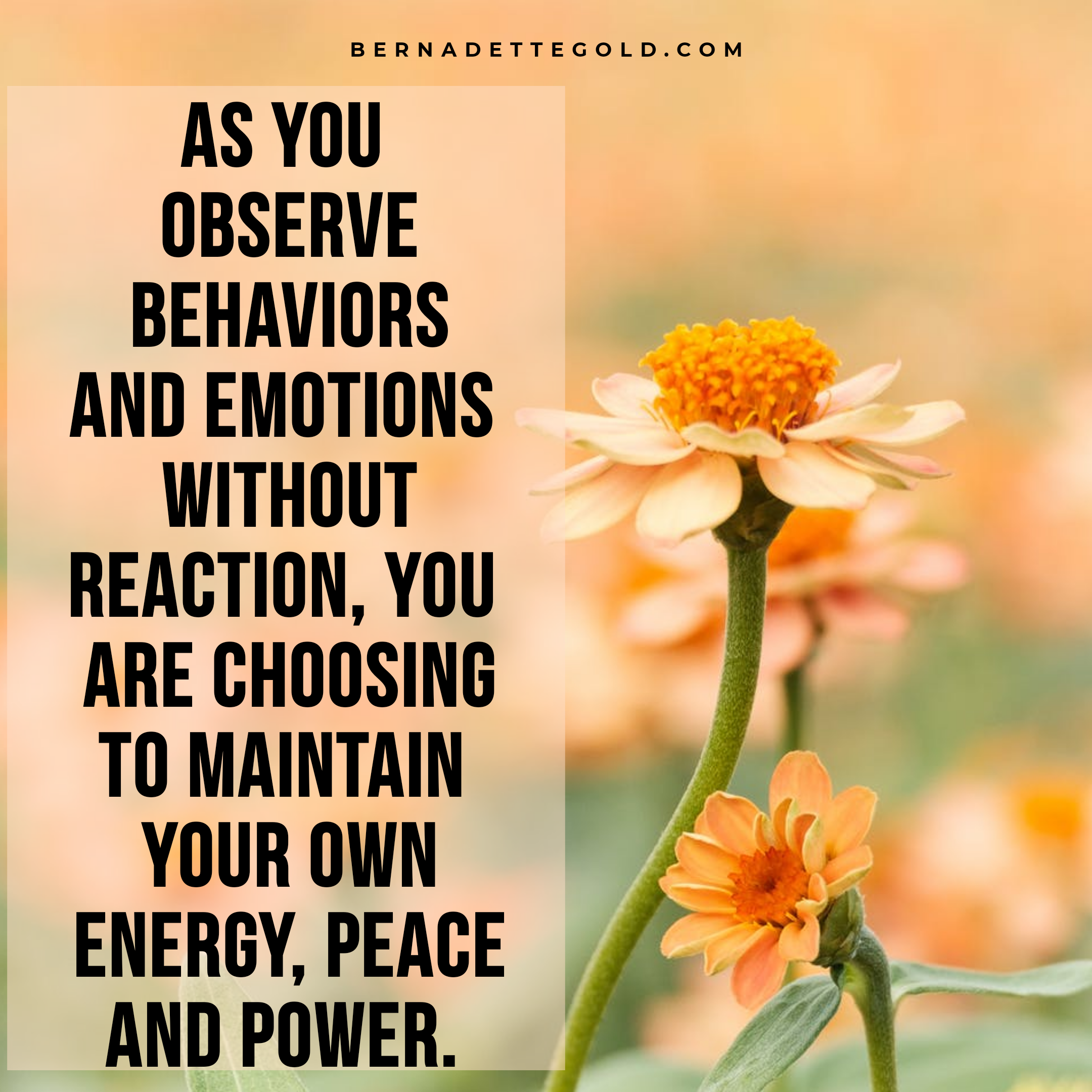 Sit back, observe and don't get pulled into the downward spiral of negative emotions and drama. ❤ If you need help schedule an appointment.  #PositiveVibes #Peace #energy #power #selfloveisthebestlove #psychicreading #clairvoyant #lifeisgood #quotes