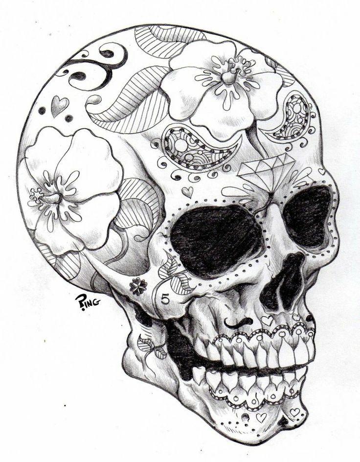 Florida Skull Coloring Pages Skull Art Skull