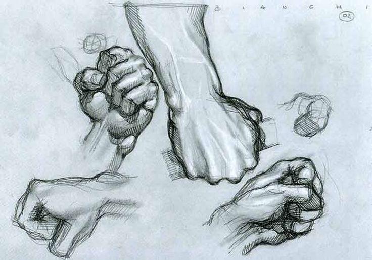 anatomy drawings - Google Search   Anatomy Unit/ Figurative ...