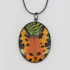 Gunmetal - Pendant - Medium - Oval - Real Butterfly Jewelry