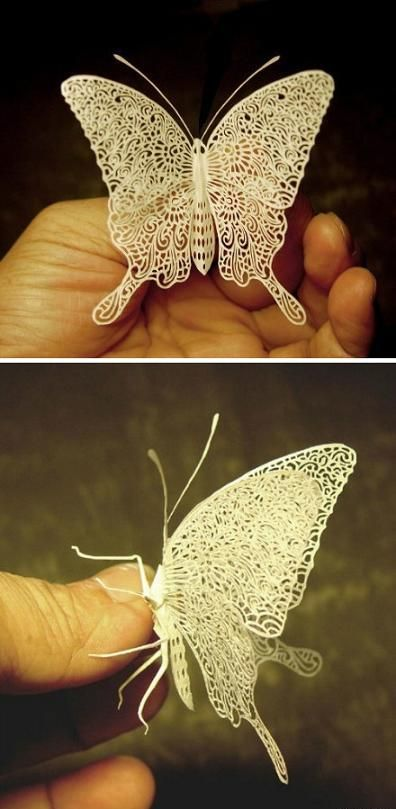 paper-cutting-butterfly.jpg 396×809 piksel