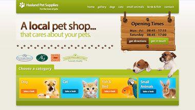 Professional Website Designers In Chesterfield Specialising In Web Design Marketing Portfolio Website Design Website Design Pets