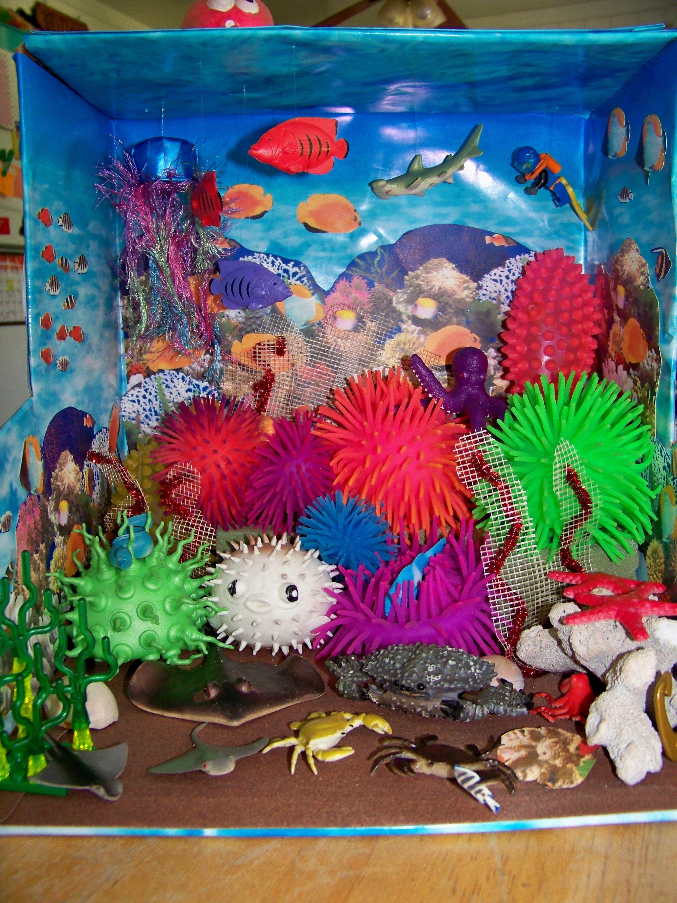 bbe0b3e1836286c06124d5f2f1b87f2e Incroyable De Aquarium Deco Des Idées