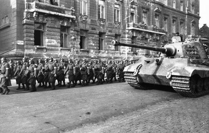 Hungarian Arrow Cross militia and a German Tiger II tank in Budapest October 1944.