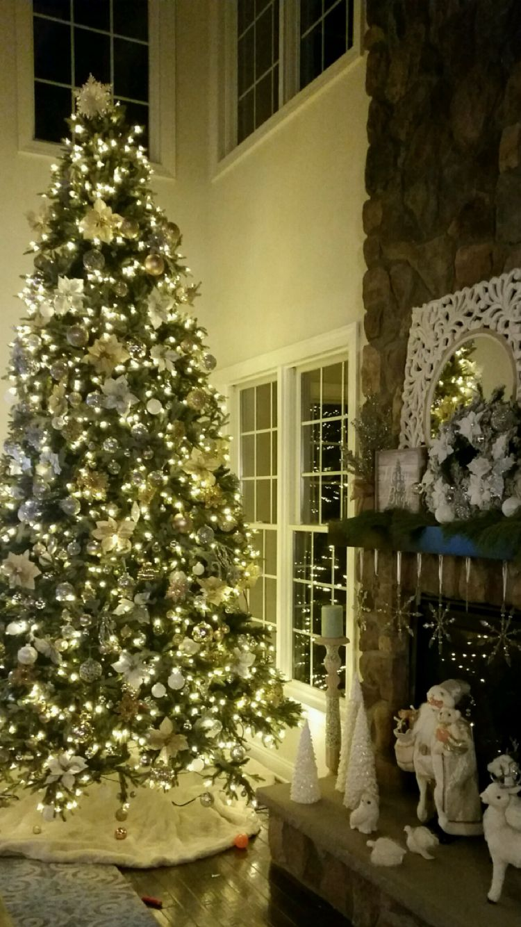 To duplicate again next year. | Holiday decor christmas, Holiday decor, Christmas lights