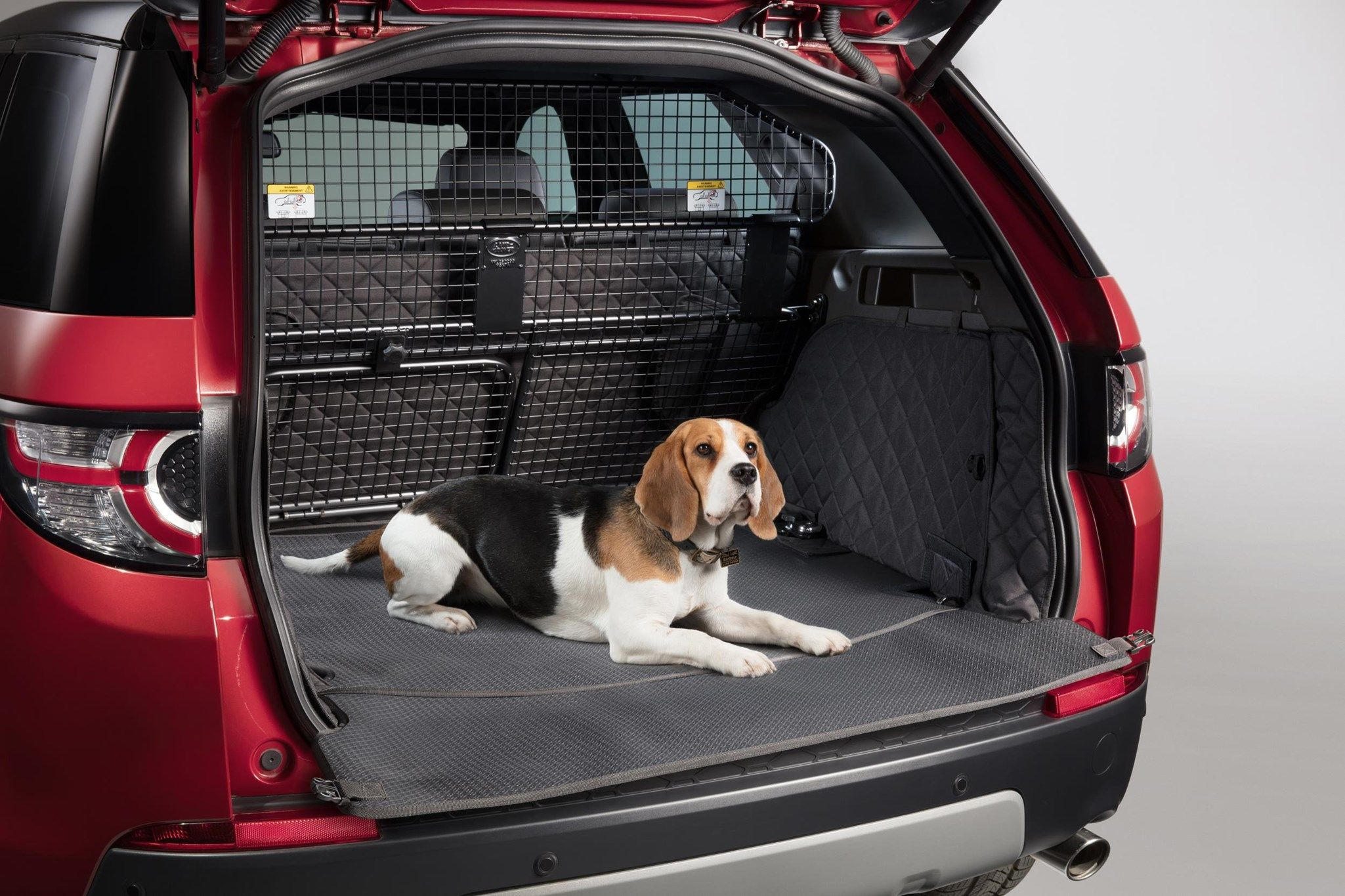 We can arrange for the safe transport of your animals