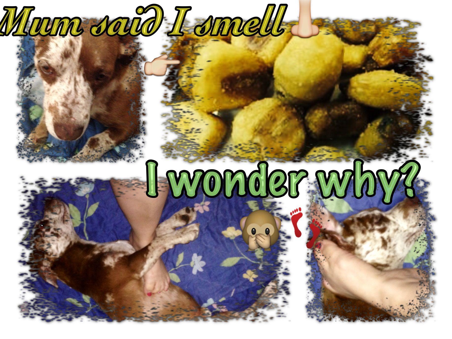 #buddybsegura Mum said I smell like corn nuts.