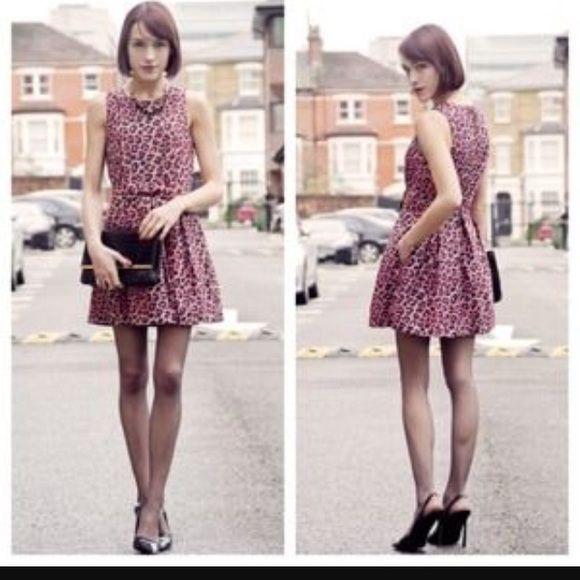 Pink.  Cheetah dress  Wear once Forever 21 Dresses Mini