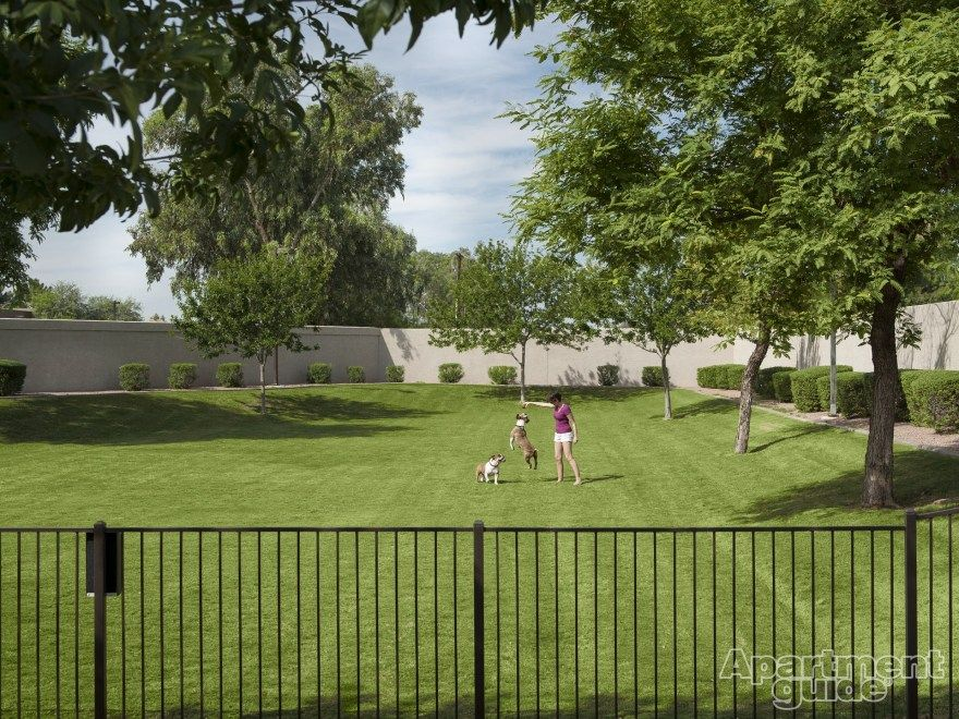 Need to find a home for you & your pet? Try searching for an #apartment with spacious dog parks like this one! #tempe #arizona #dogs
