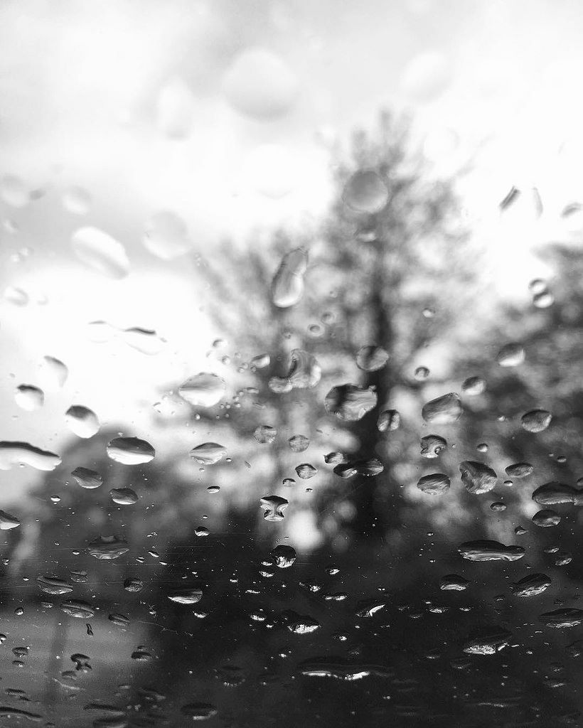 Today was so beautiful the sun was out unfortunately the beautiful weather quickly Changed into a rainy & stormy day. #rainyday #goodoldbritishweather #rain #raindrops #britishweather #stormy #rainphotography #photographylover #photographyislifee #nature
