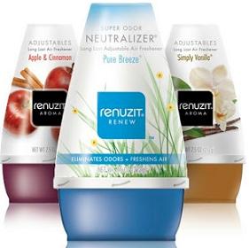 Buy 4 Renuzit Air Freshener Cones Get 2 FREE Coupon