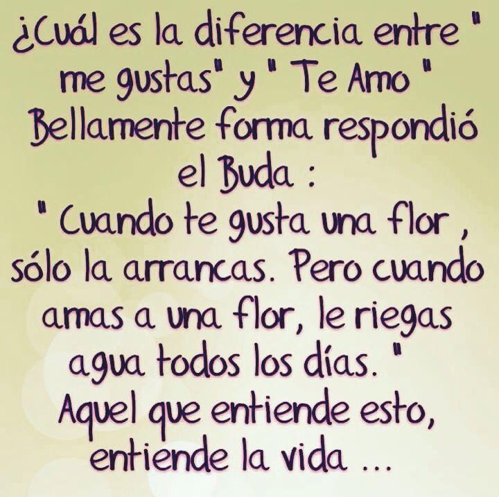 Entendiendo el Amor!