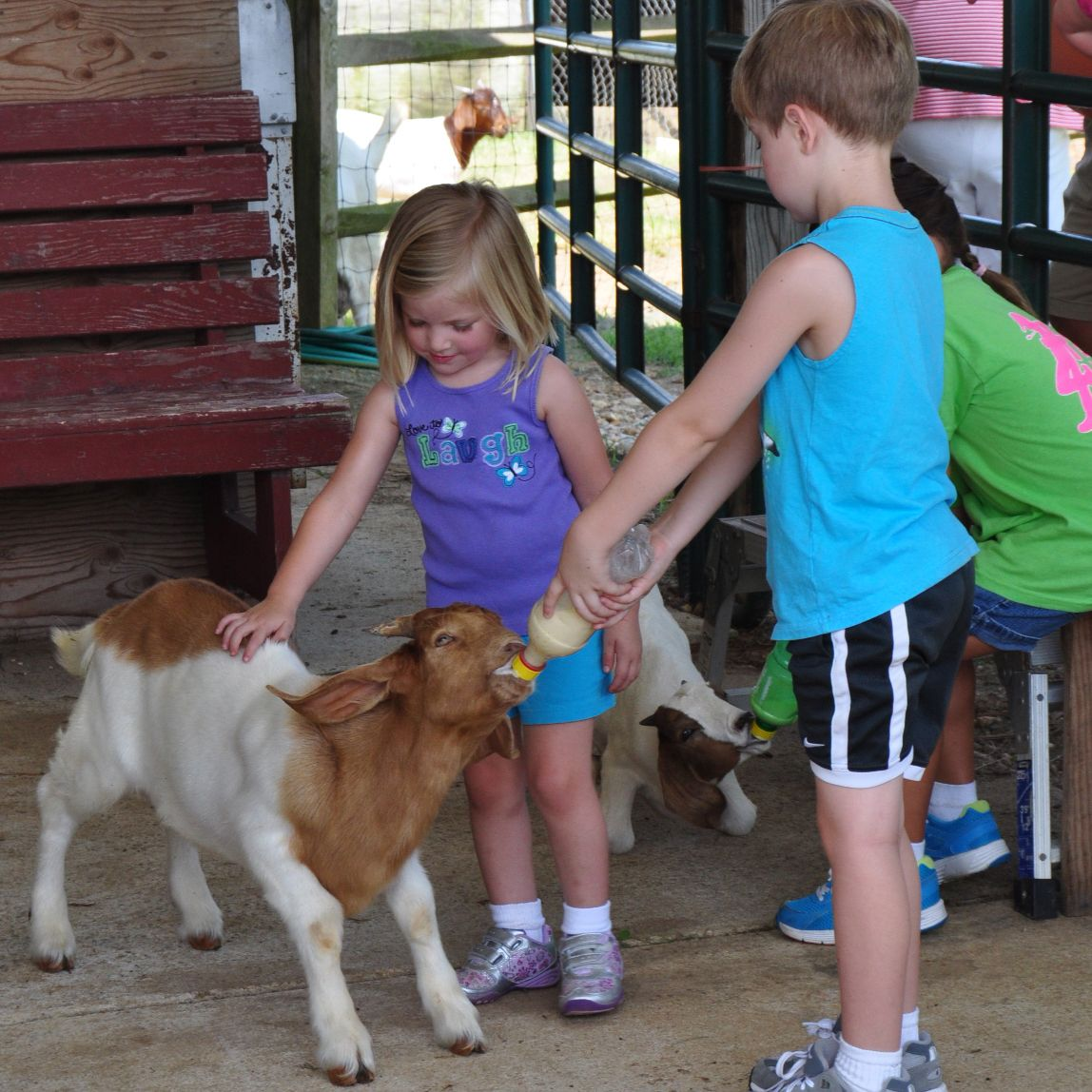 Have your kids been to a working farm to learn how food