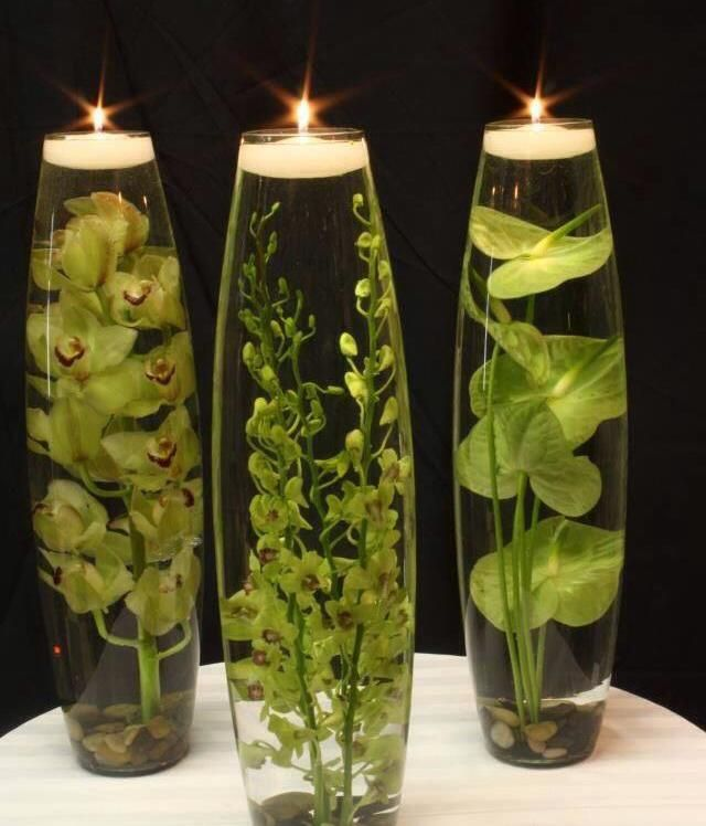 Live Plants Water And Candles Natural Home Decor Flower