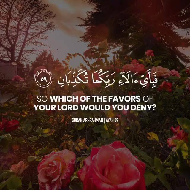 Surah Ar Rahman Ayah 56 Video Quran Recitation Quran Verses Quran Quotes Love