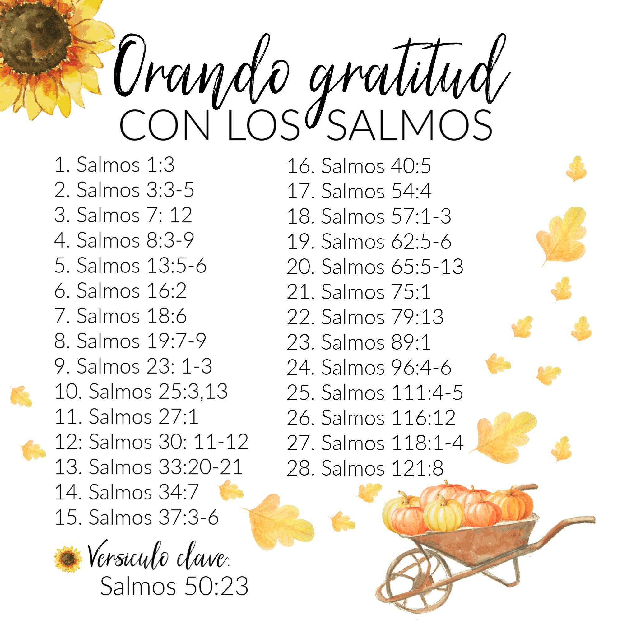 Estudio Bíblico Orando Gratitud Con Los Salmos Biblical Verses Bible Quotes Psalms