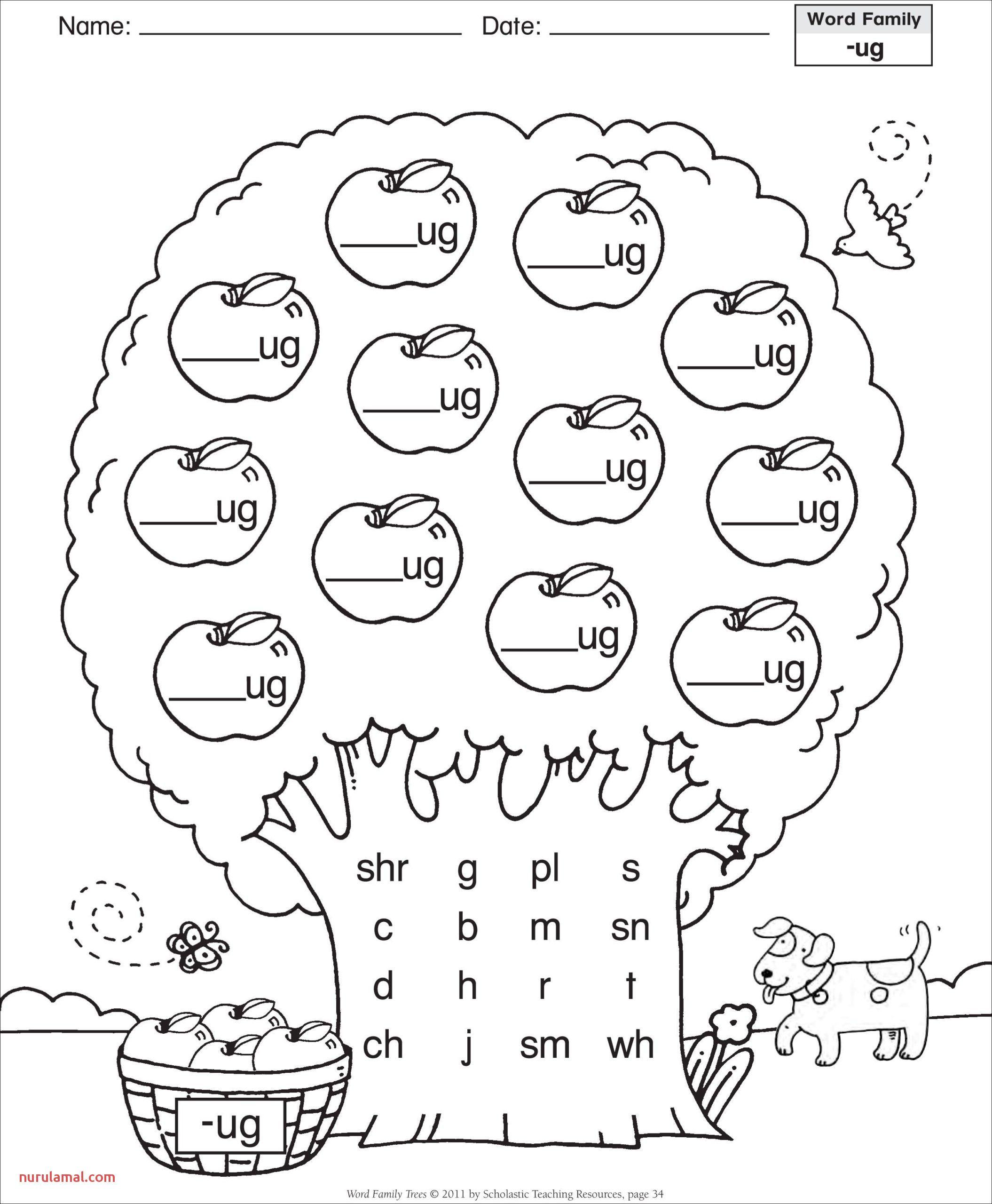 Printable French Worksheets Practice In