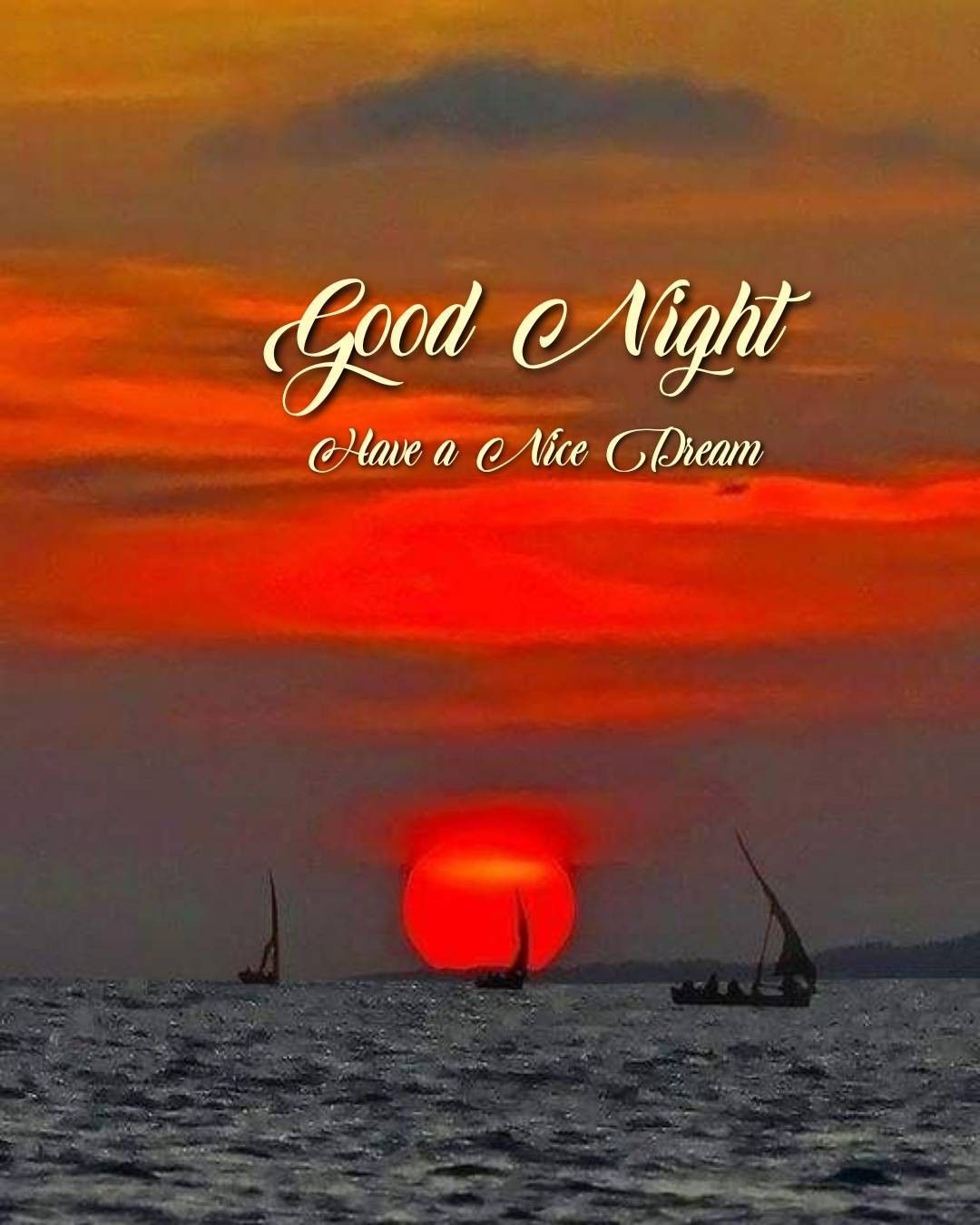 Good night it's right!. Wow... Beautiful sunset!! | Good night beautiful,  Good night messages, Good night image