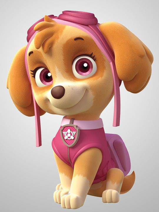 Pup Pup Boogie | Paw patrol party, Skye paw patrol, Paw patrol