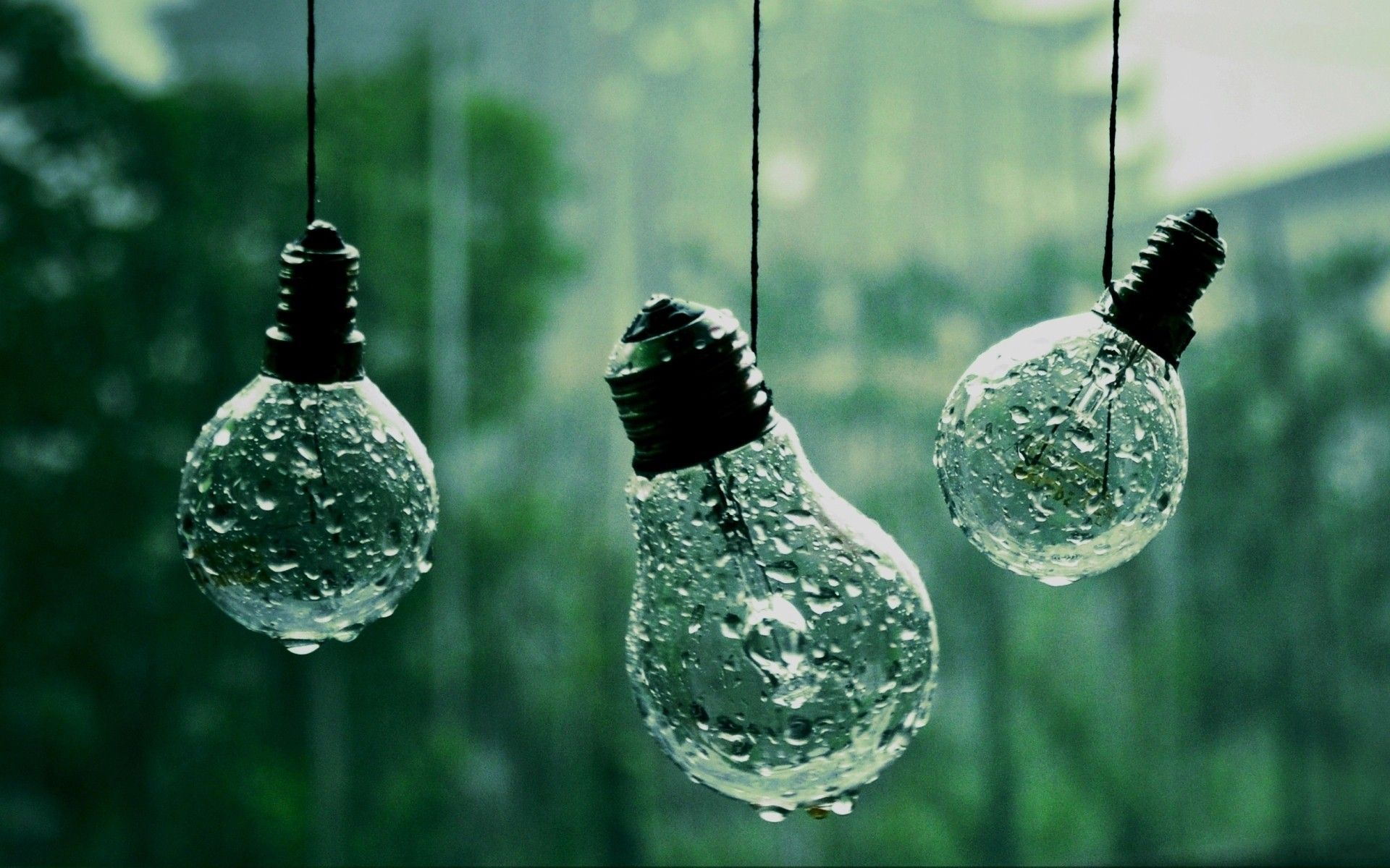 59 Abstract Nature Wallpaper Pictures Green Aesthetic Rain Wallpapers Aesthetic Colors