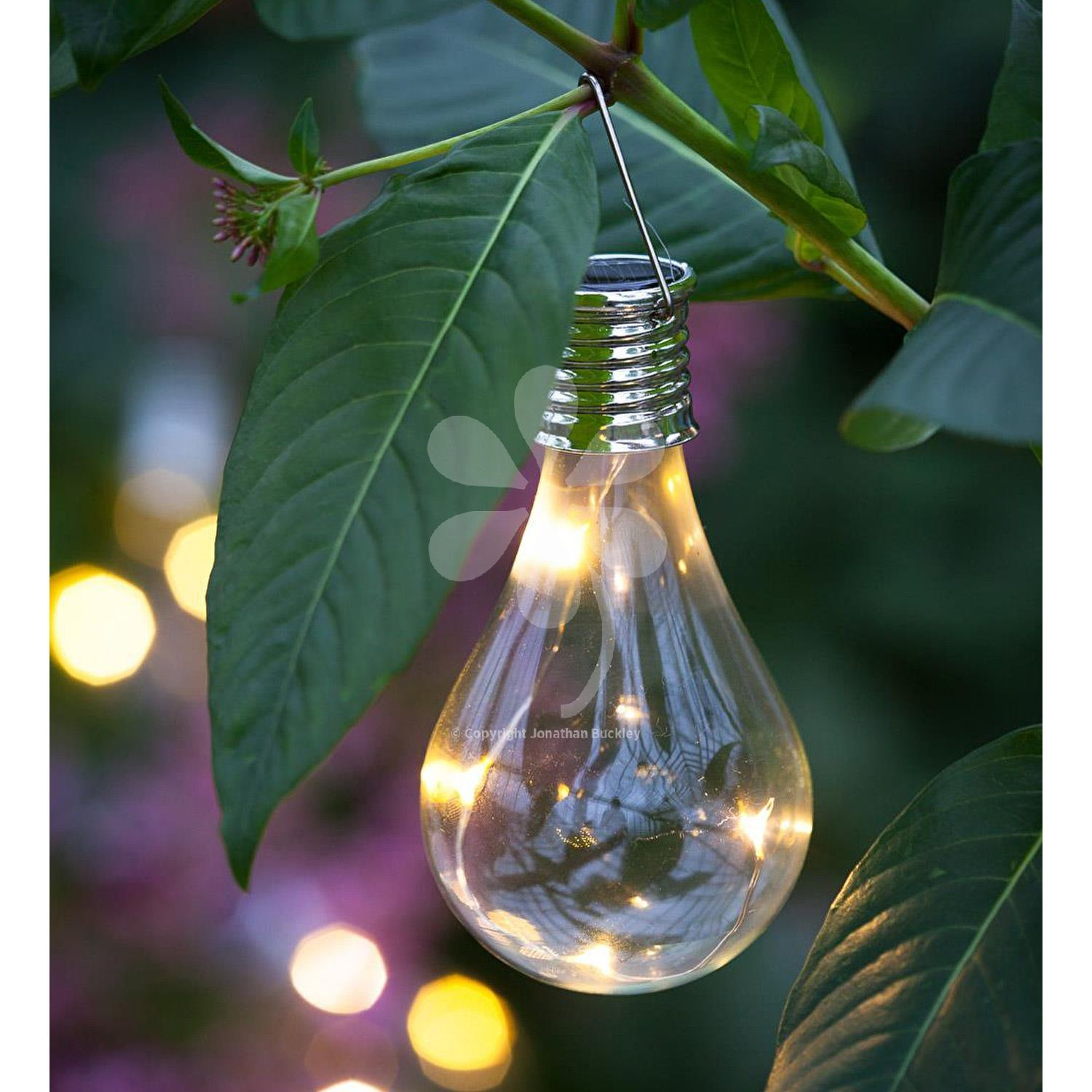 Shaped Like A Traditional Filament Light Bulbs To Hang In A Tree