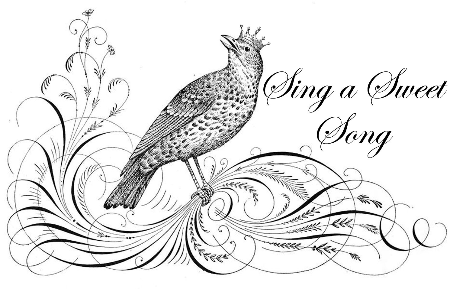 Free Graphic Of The Evening Crowned Song Bird