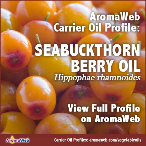 Seabuckthorn Berry Carrier Oil | AromaWeb