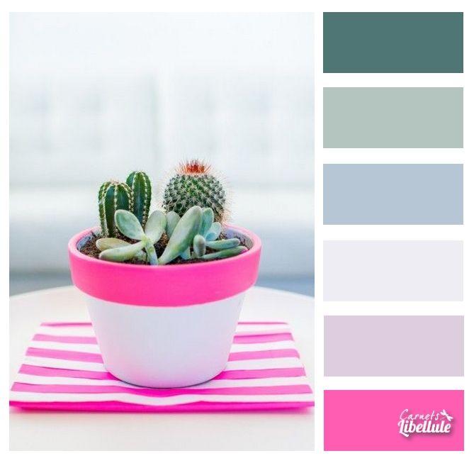 Petit cactus fantaisie | Colors | Pinterest | Macetas, Para el hogar ...