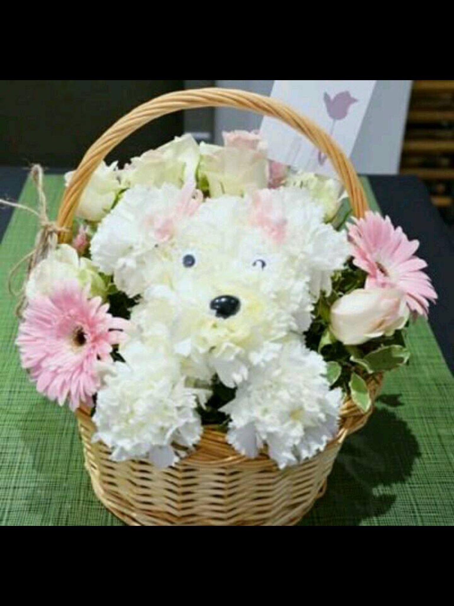 Doggie crafty pinterest doggies flower arrangements and flower adorable chrysanthemum puppywith pink gerber daisies white roses flower basket bouquet izmirmasajfo Gallery