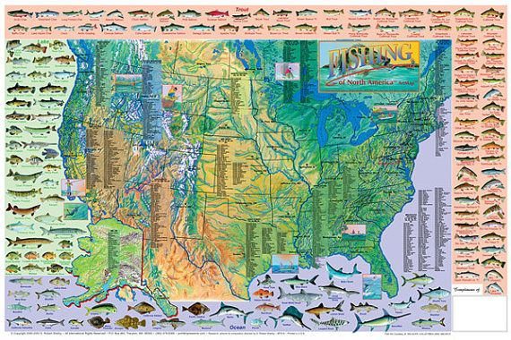 Game Fish of North America Wall Map Poster | Pinterest | Wall maps