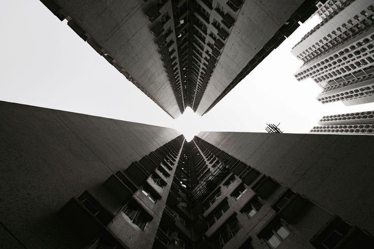 Look up  |   Photo by Ekaterina Busygina