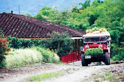 paisajes naturales eje cafetero- Colombia