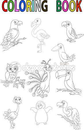 Ilustración de vector de aves de dibujos animados para colorear ...