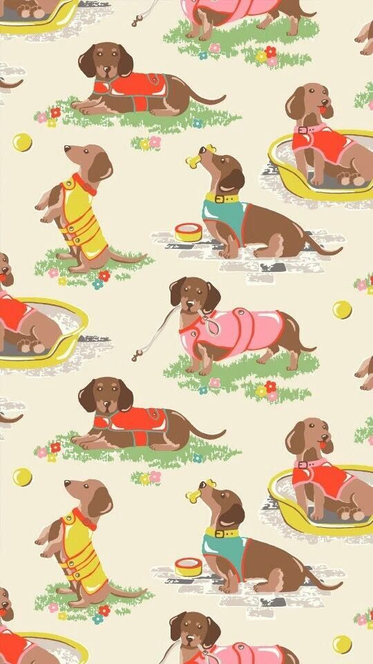 ᴮᵞᵛᴵ ᵞᴼᵁ Dachshund Love Dachshund Art Dachshund Dog