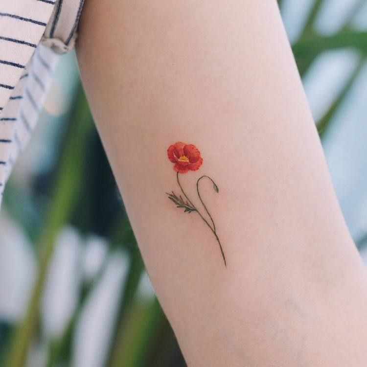 60 Beautiful Poppy Tattoo Designs And Meanings Page 4 Of 6 Tattooadore Poppies Tattoo Small Girl Tattoos Small Tattoos