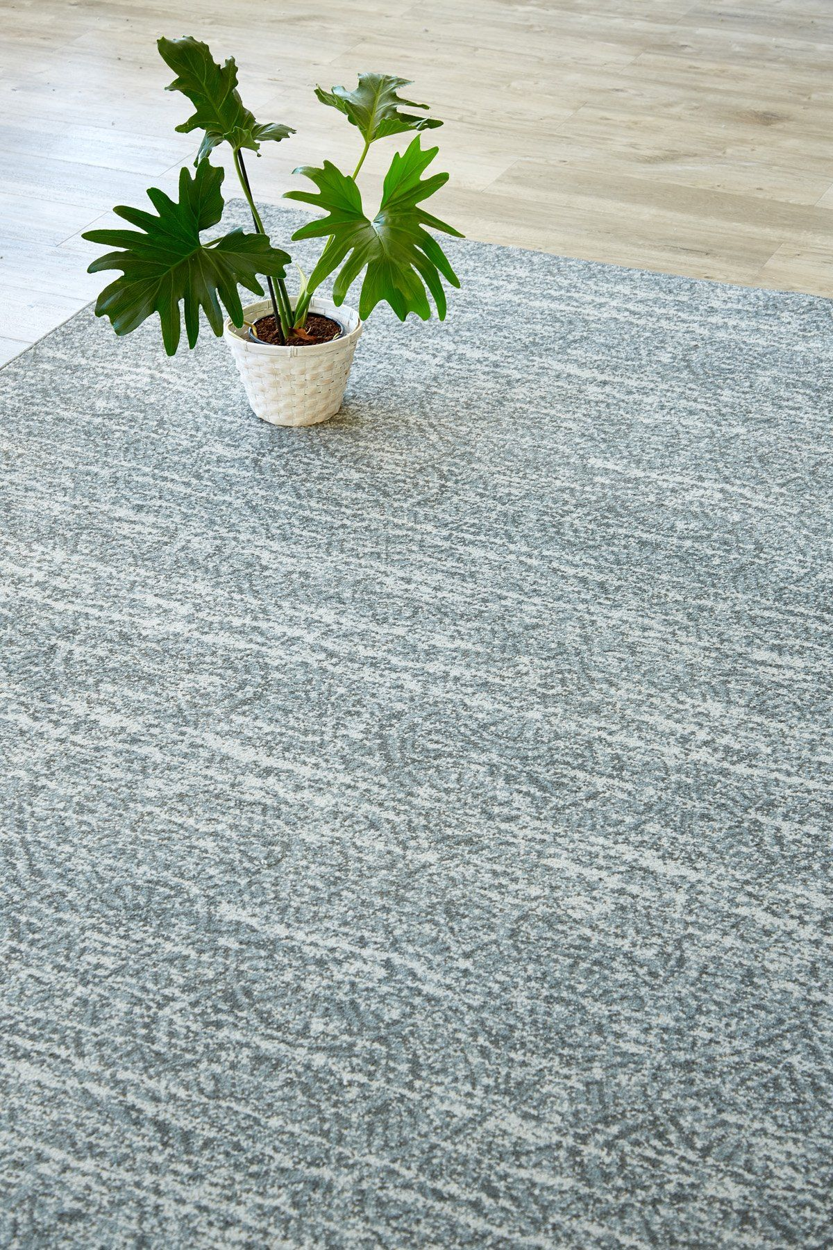 Grey Chinese Fan rug Airloom (With images) Chinese