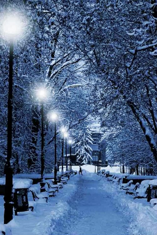 Magical Winter Evening