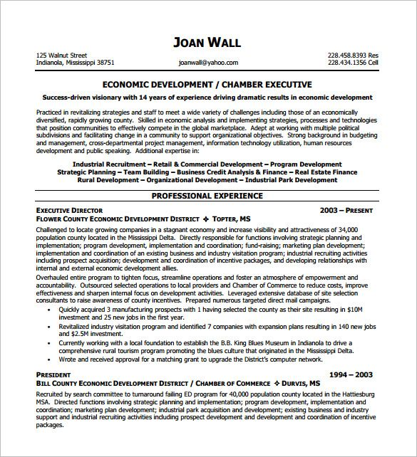 Non Profit Executive Resume Template  Executive Resume Template And