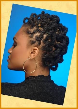 Image Result For Thirsty Roots Dreadlocks Natural Hair Styles Natural Hair Twists Natural Hair Styles For Black Women