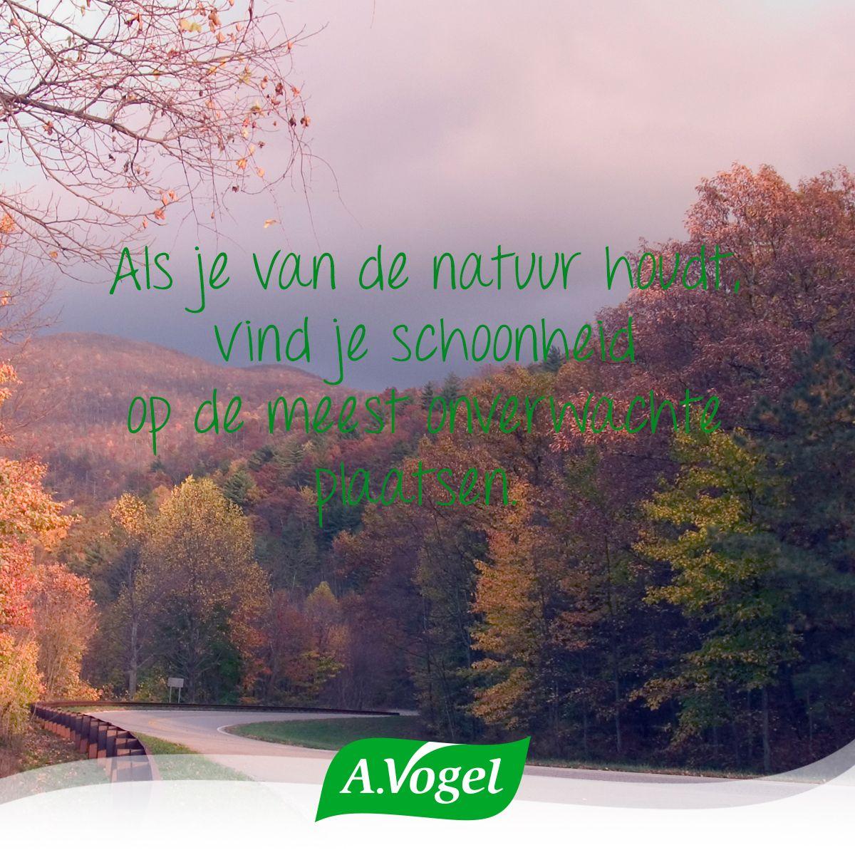 Schoonheid is overal om ons heen! #schoonheid #natuur