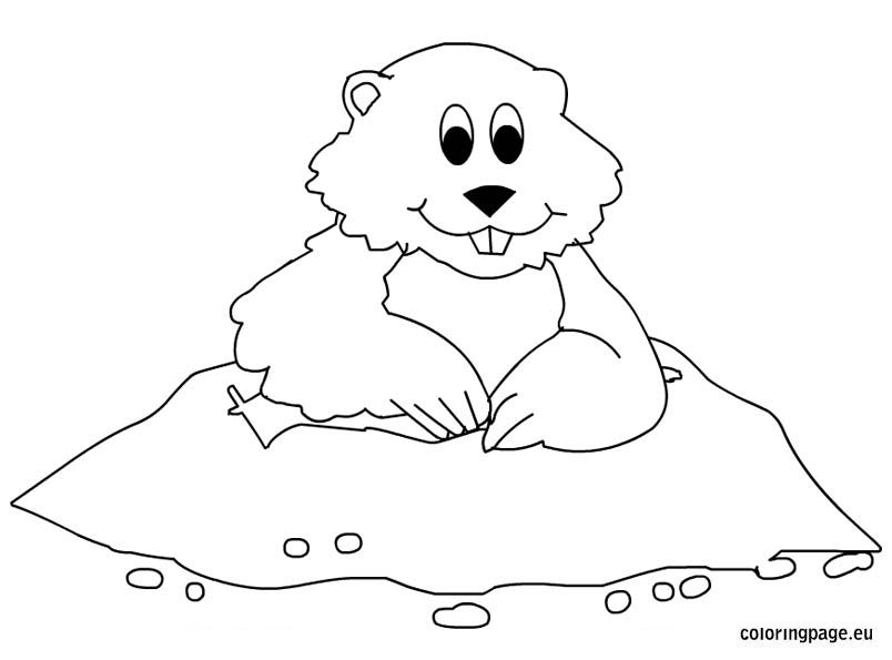 Groundhog Day - Coloring pages for kids | groundhog | Pinterest