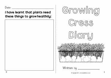 Growing cress diary template | Science | Diary template, Cress