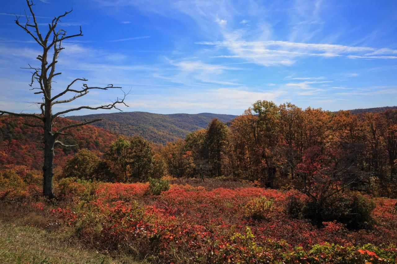 Shenandoah National Park in Virginia, namely the park's Skyline Drive, is one of the nation's premier fall RV trips for people who want to see fall foliage. In addition to the stunning scenery, Shenandoah offers plenty of other outdoor activities as well.