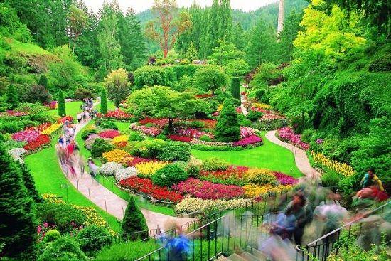bbef06a69fc05d8a86ea0a47ef9cee8b - How Long Does Butchart Gardens Take