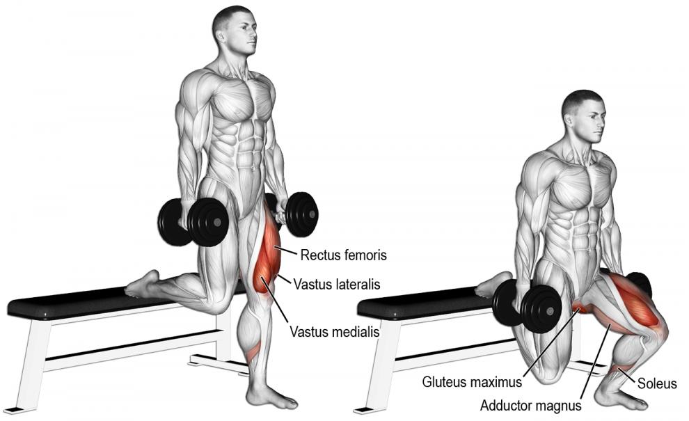 Comment effectuer l exercice fentes sur banc avec haltères en musculation   8d1f652e707