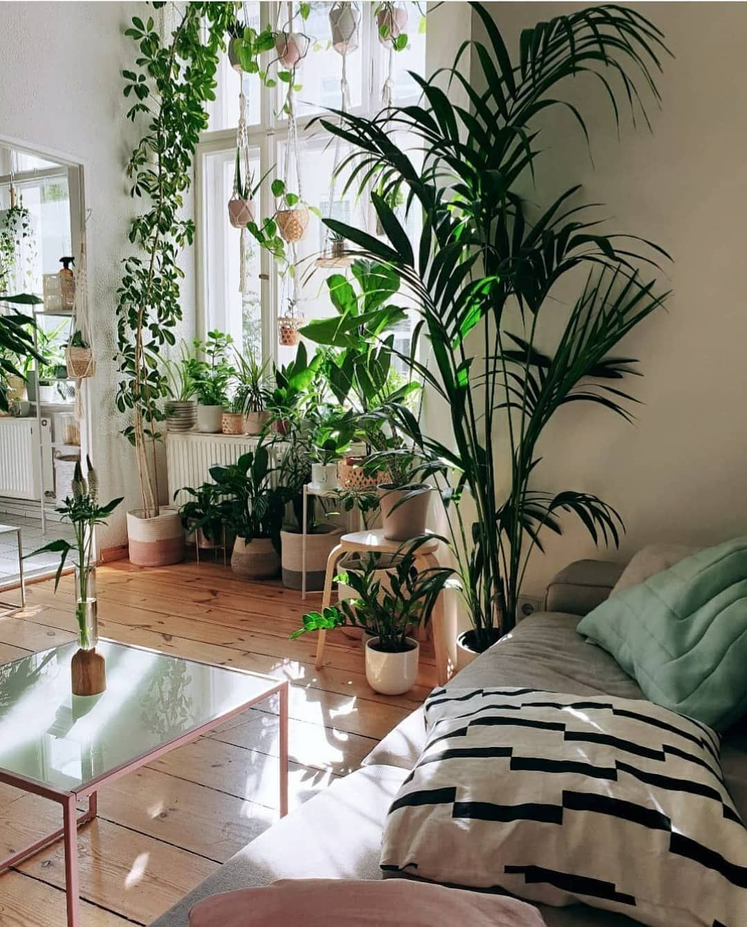 """Gefällt 6,892 Mal, 31 Kommentare - Urban Jungle Bloggers™ (@urbanjungleblog) auf Instagram: """"Sun's out, plants are taken care of, we hope your day is off to a great start! 🌿🌱🌵🌴🍀 📷 by…"""""""