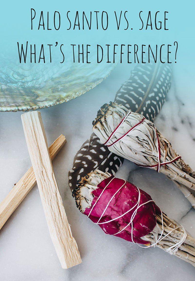 Sage vs. Palo Santo // What's the Difference? Palo santo