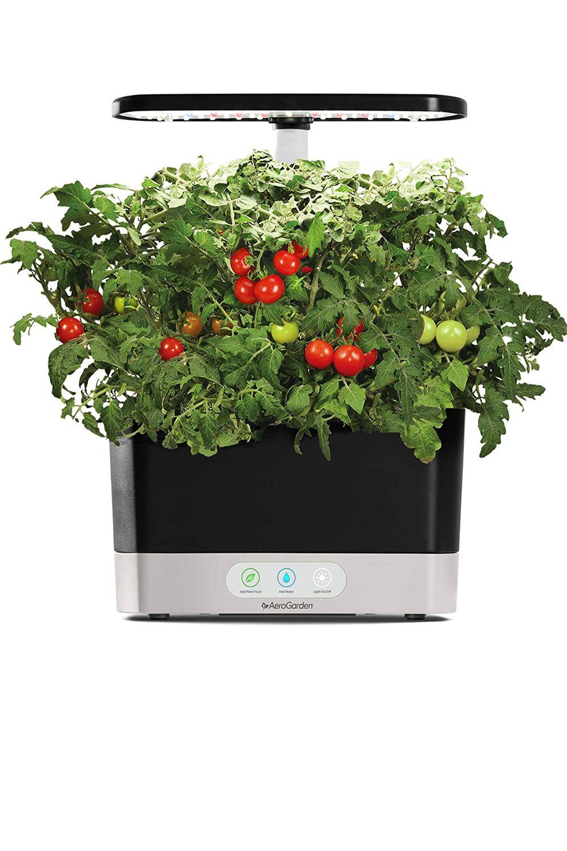 Indoor Garden Includes Gourmet Herb Seed Kit in 2020