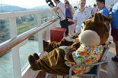 Photo of Disney Cruise Ship Staterooms To Avoid  Disney Cruise Ship S…