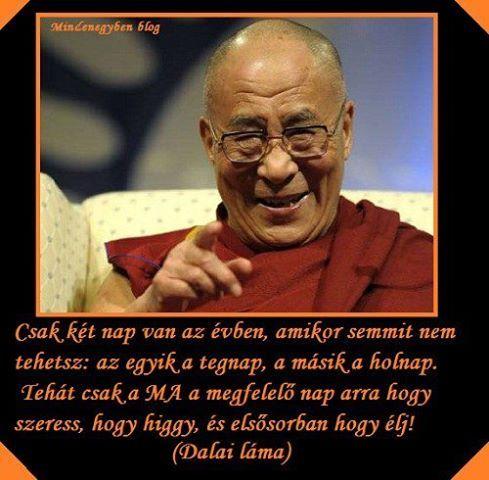 dalai láma idézetek képekkel Dalai láma | Star quotes, Life quotes, Inspo quotes